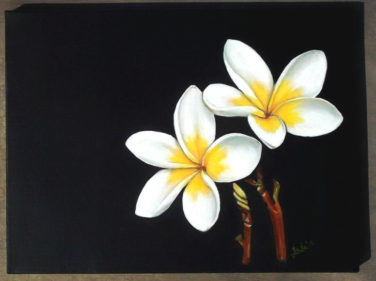 Plumeria, flower, white, oil painting, realistic, realism, white ...